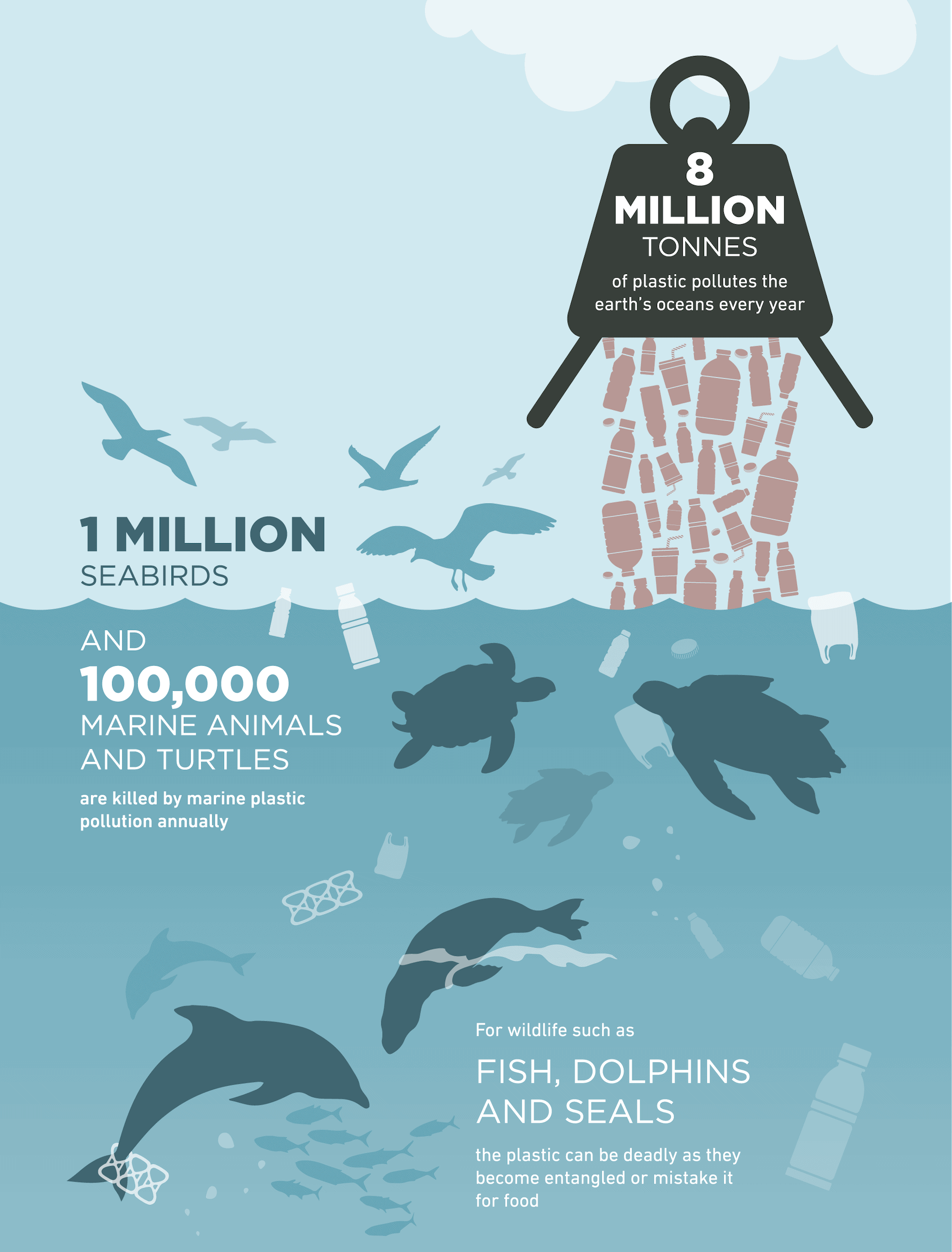 8 million tons of plastic dumped into the oceans each year, killing millions of seabirds and sea life.
